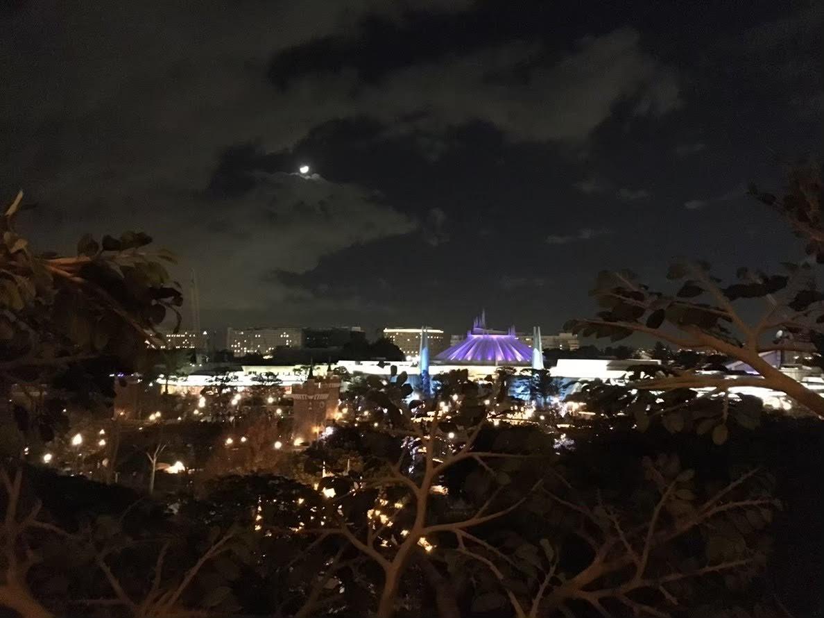 スイスファミリー・ツリーハウスからの風景
