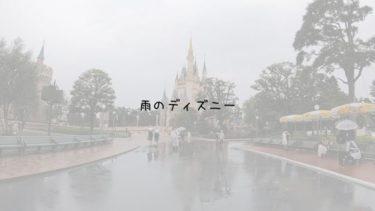 【雨の日のディズニー】持ち物、服装は?楽しみ方は?回り方は?